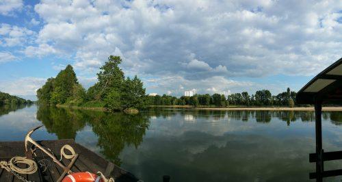 Les aventures d'Arthur, le silure de la Loire