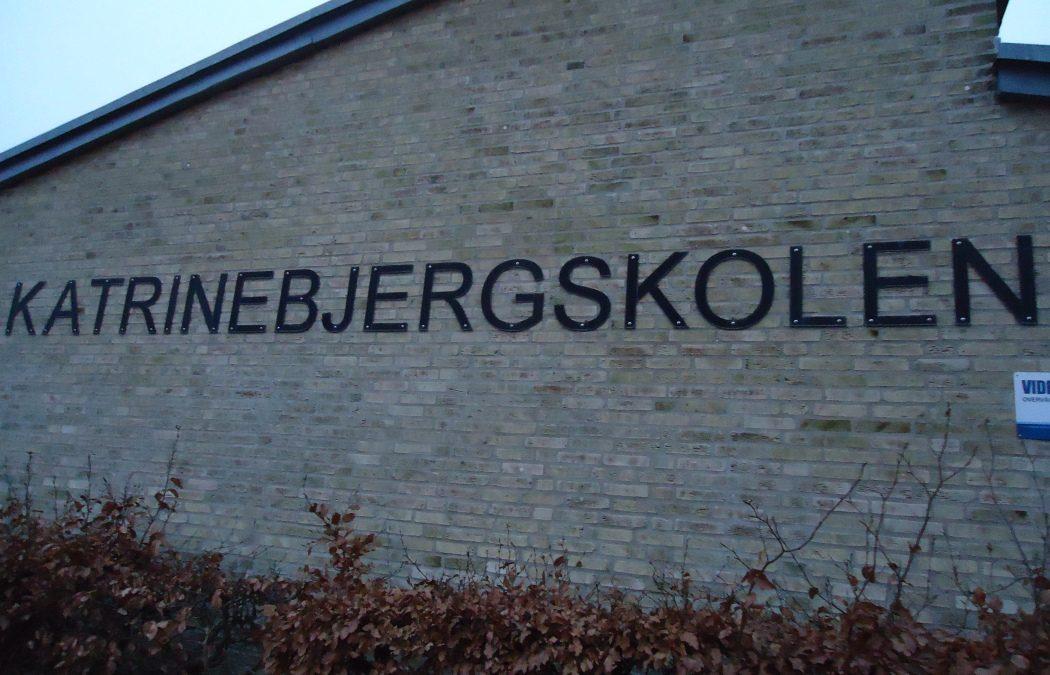 Au Danemark, la scolarité des autistes fait son nid