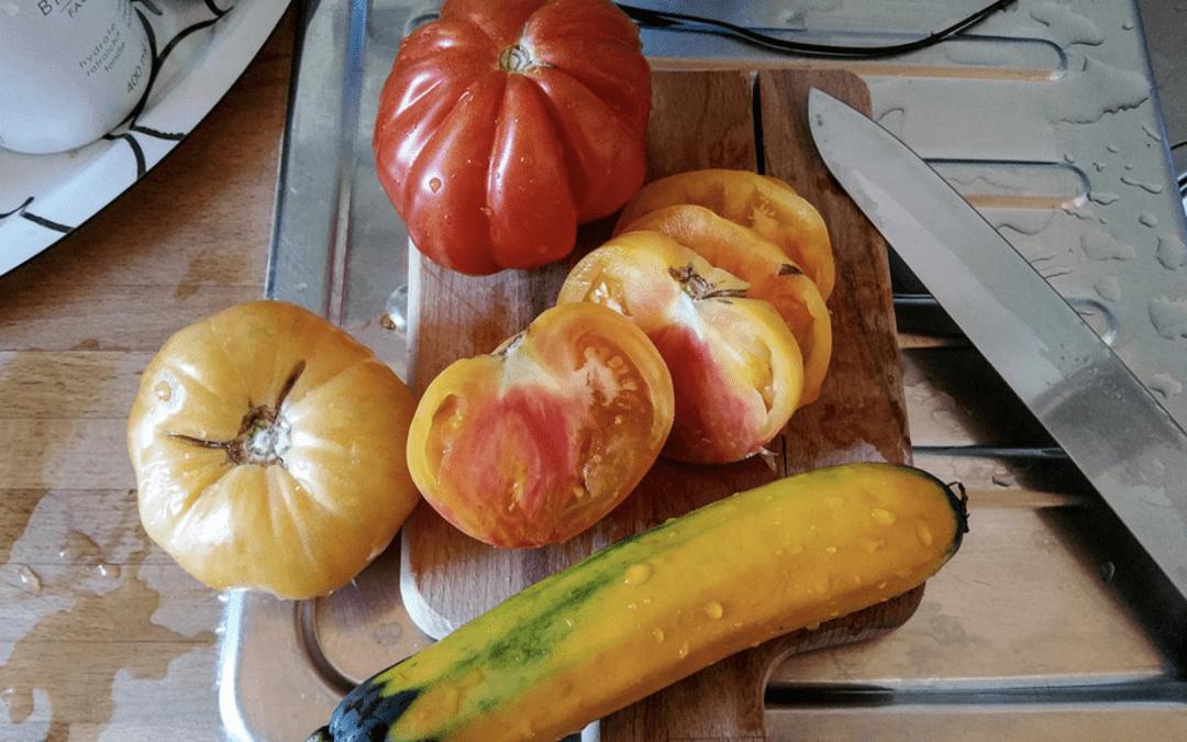 L'alimentation, notre première médecine