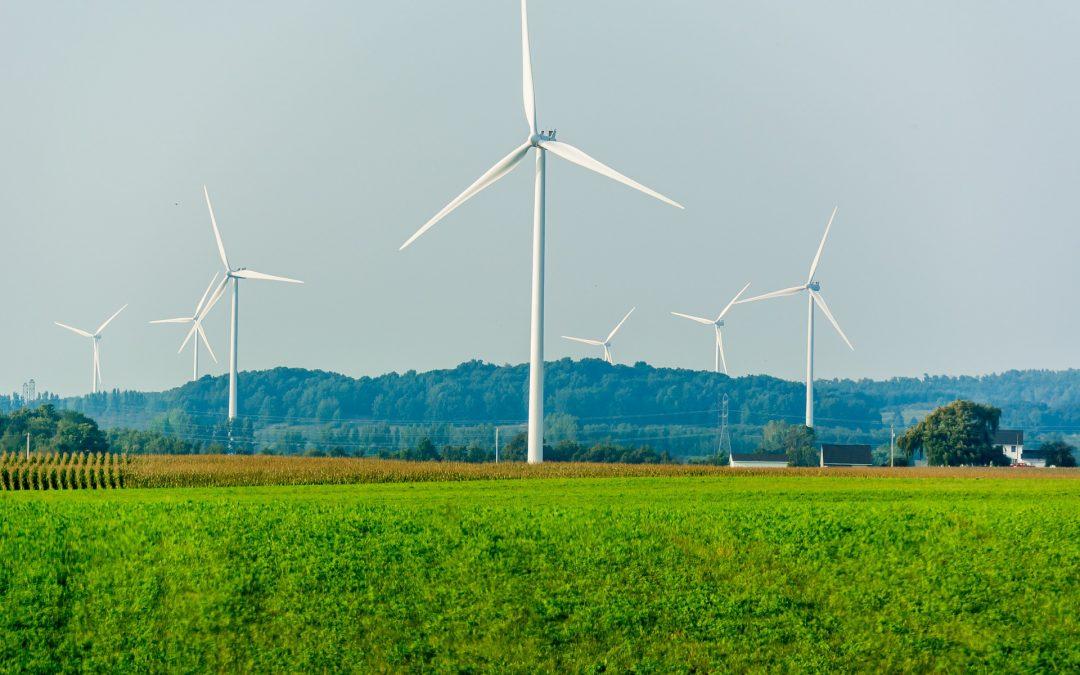 Tensions sur les énergies renouvelables